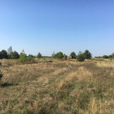 wytyczanie terenu, organizacja placu budowy